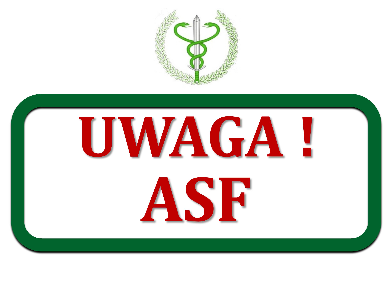 ASF - realne zagrożenie - informacja ochorobie