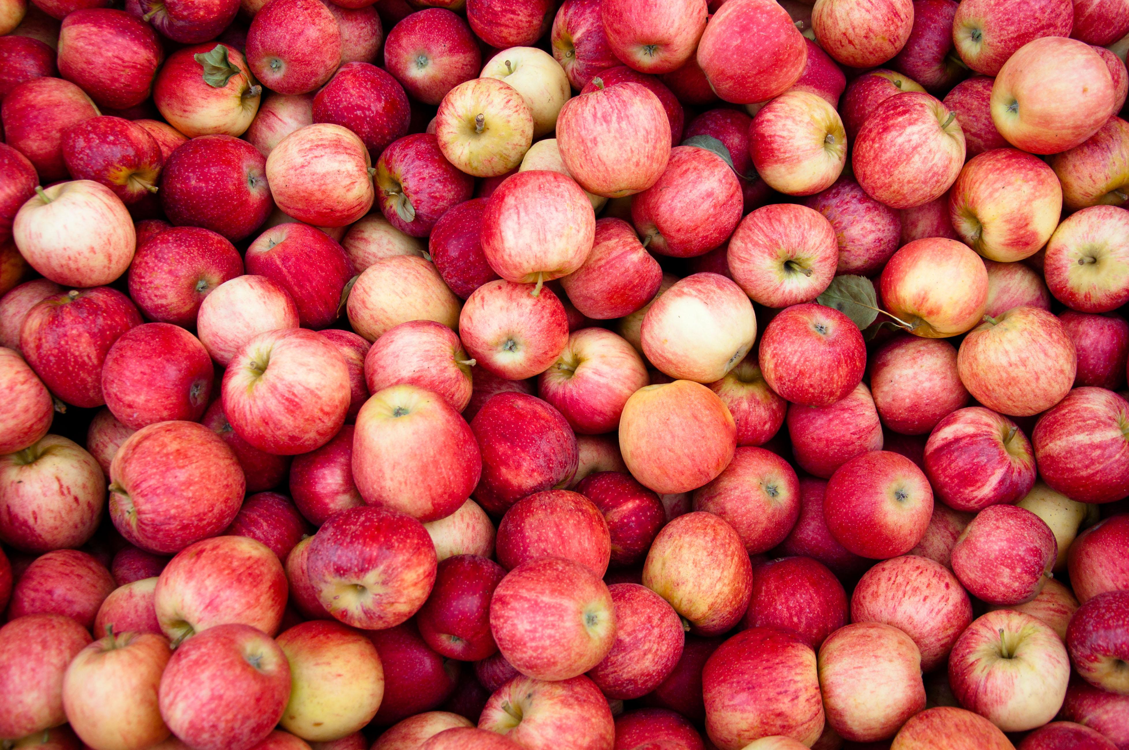 Украинские яблоки оказались лучше польских?