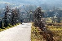Sołectwo Brzezinki